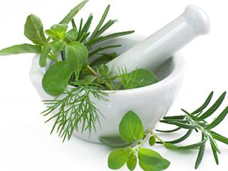 Тайните на народната медицина. Как ни лекуват растенията